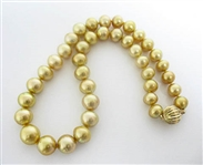 RARE 14K NATURAL GOLDEN SOUTH SEA PEARL NECKLACE