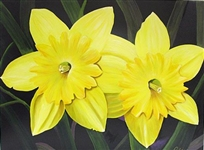 PALYN *** DAFFODIL TWINS *** SIGNED CANVAS